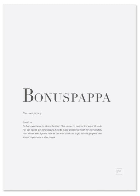 bonuspappa-poster