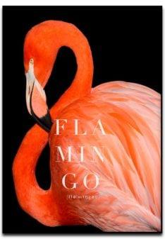 flamingo fotokunst poster