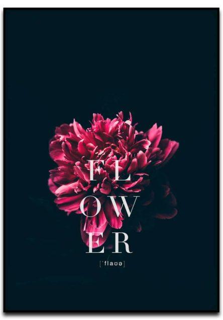 flower fotokunst poster