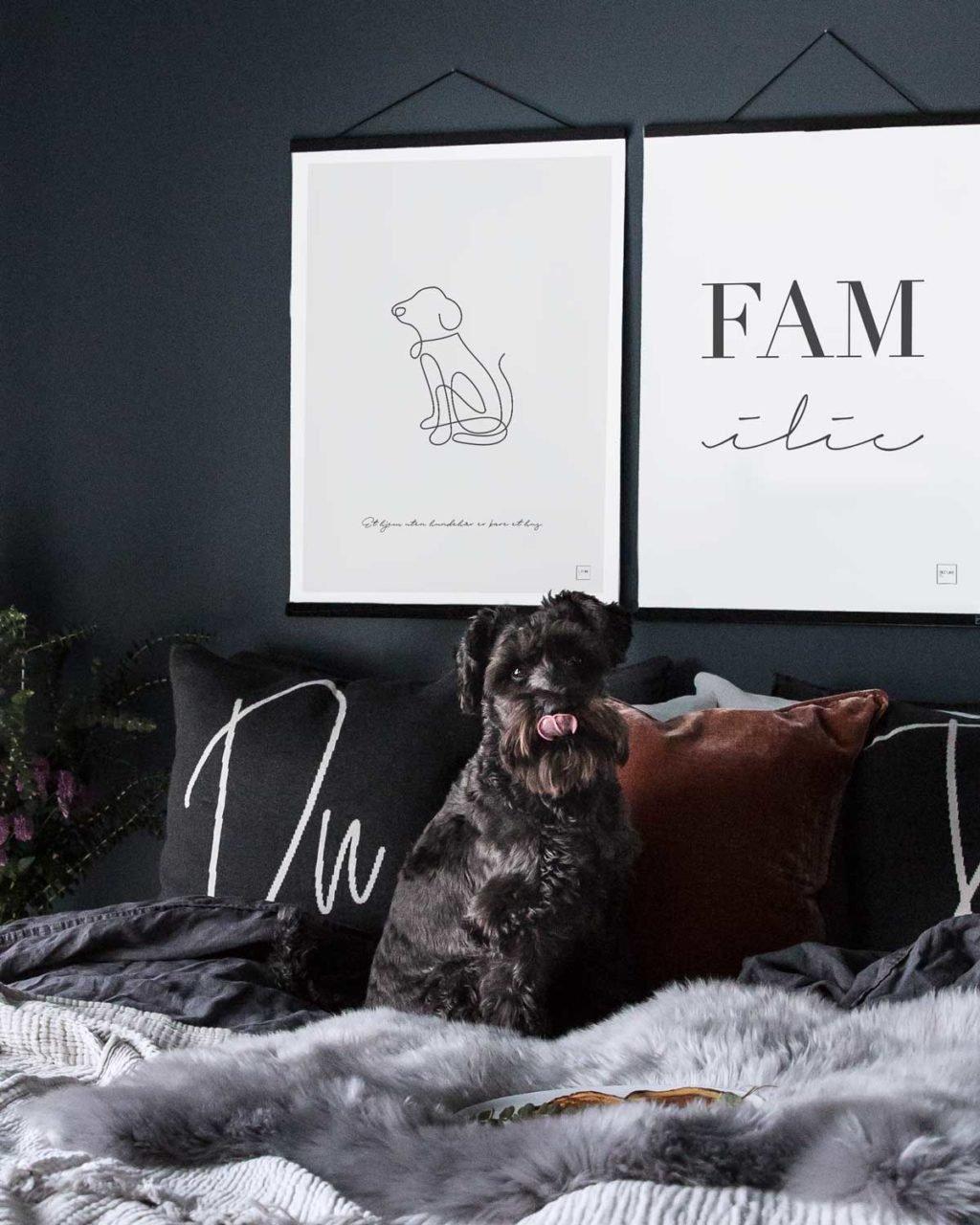 """""""Et hjem uten hundehår er bare et hus."""""""