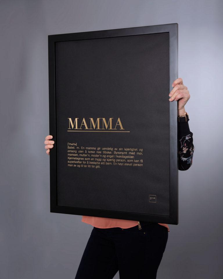 MAMMA gull poster