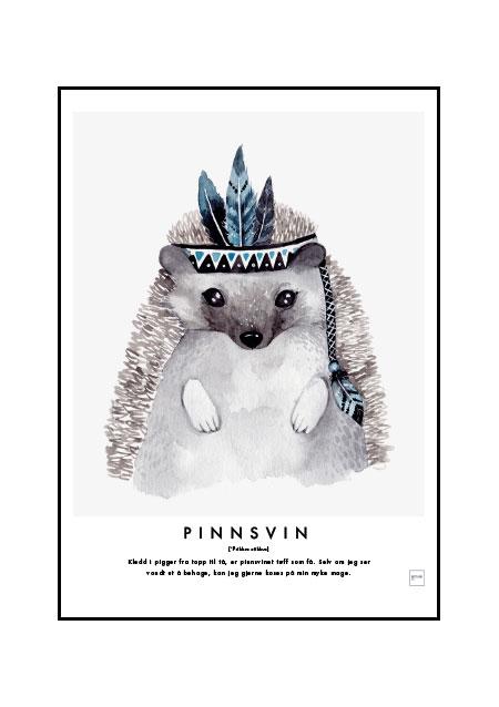 Pinnsvin - barneromsposter