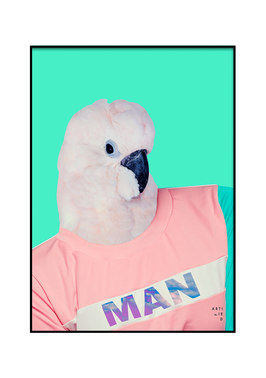 birdman poster fra artified