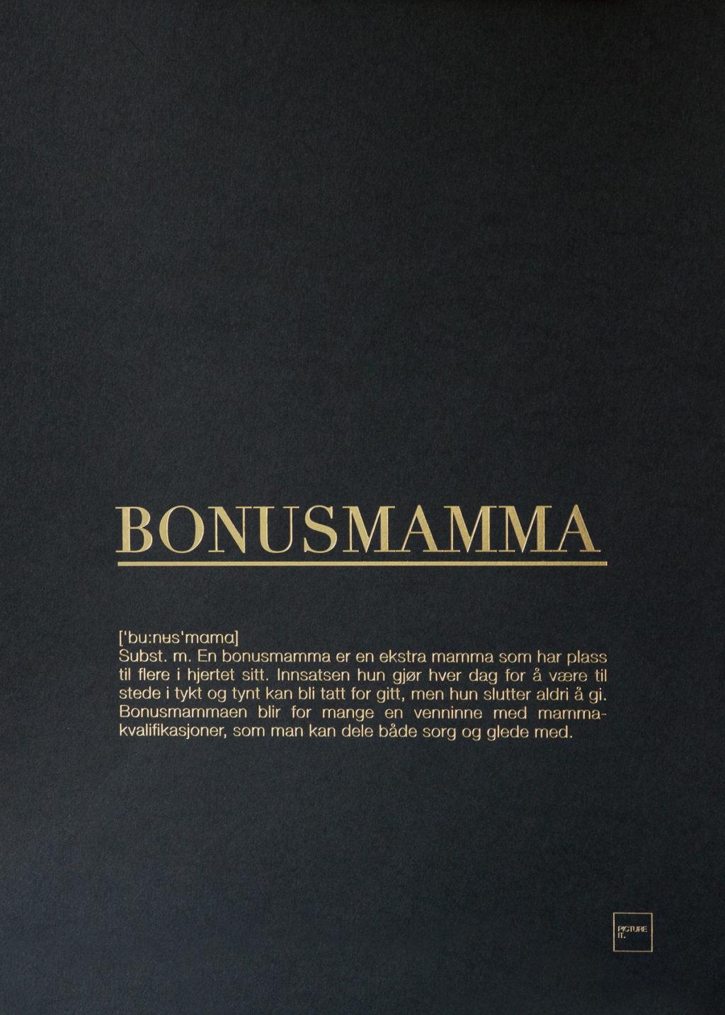 BONUSMAMMA gull poster
