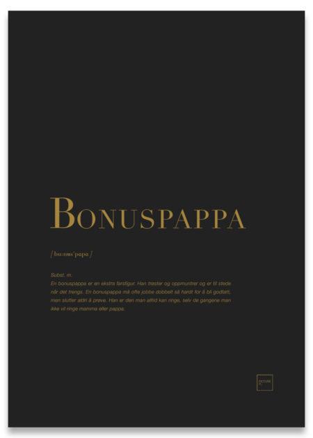 Bonuspappa gull poster