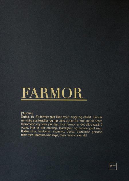 FARMOR gull poster
