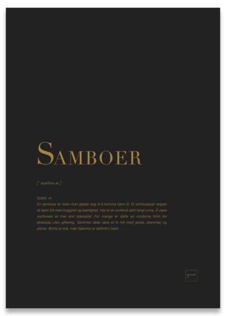 Samboer gull poster