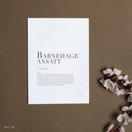 Kort til BARNEHAGEANSATT